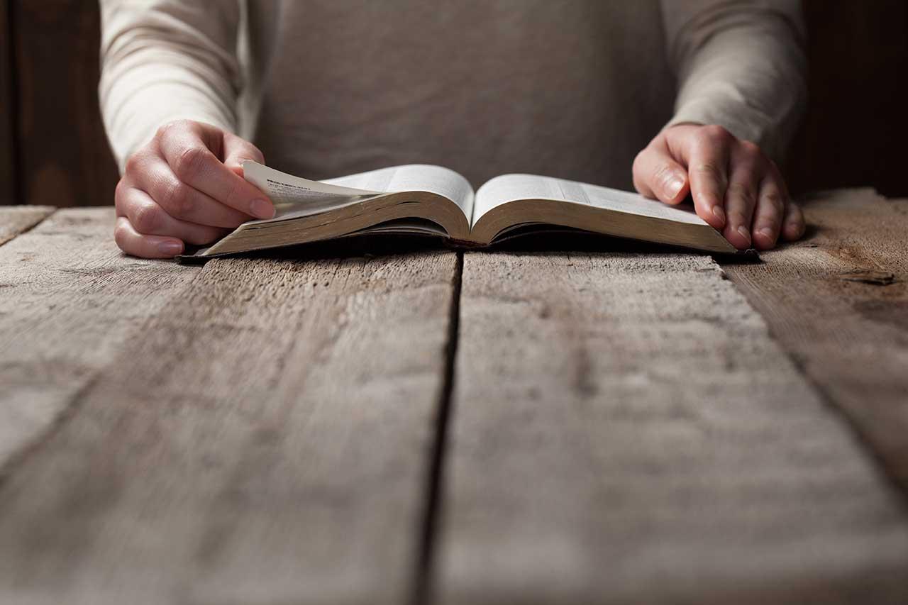 Mes de la Biblia, tiempo para valorar el tesoro de la Escritura