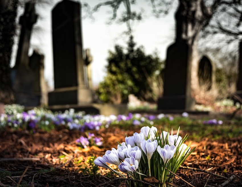 Día de Todos los Difuntos: La muerte es renacer al mundo nuevo