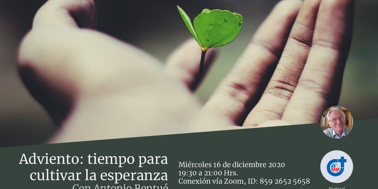 """Invitación al encuentro virtual """"Adviento: tiempo para cultivar la esperanza"""""""
